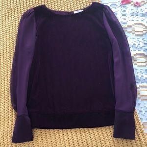 Gorgeous Velvet and Sheer sleeve blouse